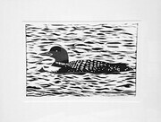Loon of the Lake
